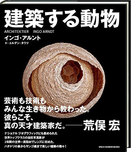 建築する動物 (Animal Architecture)