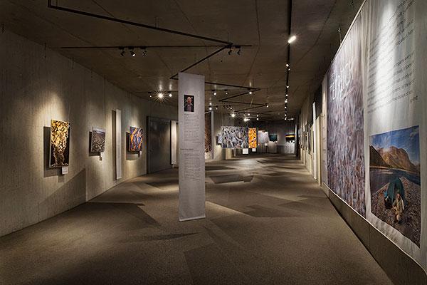 Ingo Arndt Exhibition