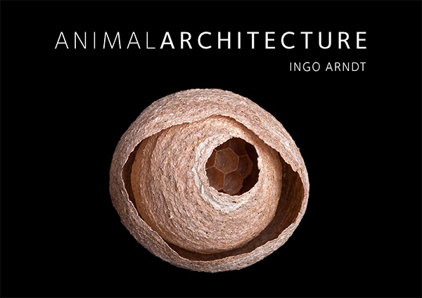 Animal Architecture | Ingo Arndt