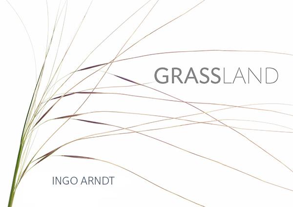 Ingo Arndt   Grassland