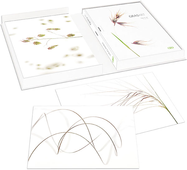 GRASART Collector's Edition available