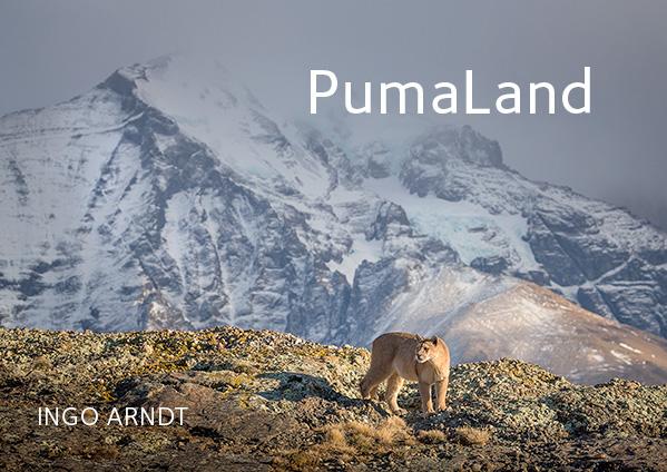 PumaLand | Ingo Arndt